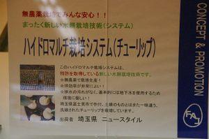 20061208img_4849