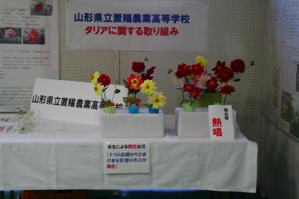 20071006img_0479