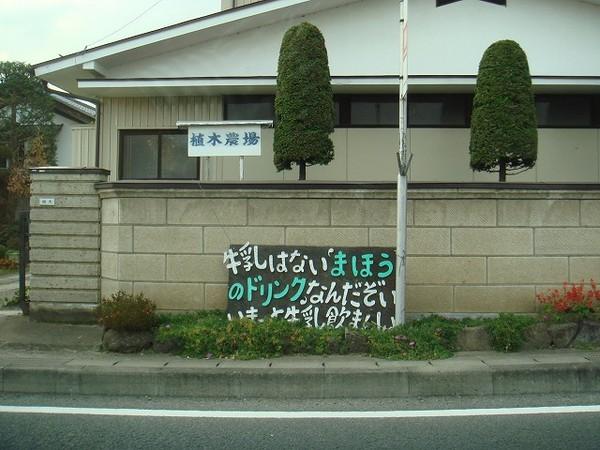 20071109dsc04090