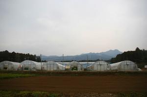 20070124img_8996