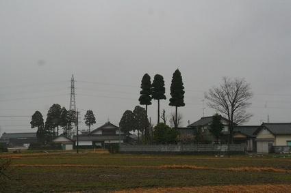 20090314img_0119