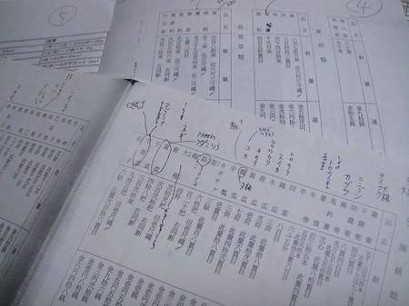 20091129dsc04270