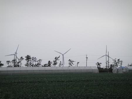 20091203dsc04557