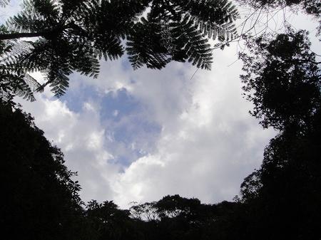 20091208dsc05460