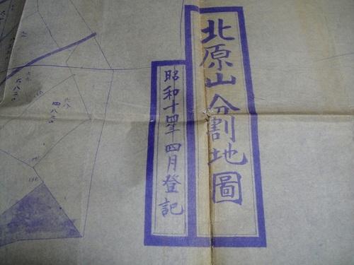 20100323dsc01142