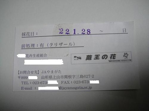20100427dsc03803