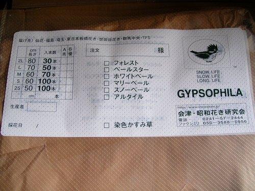 20100629dsc07899