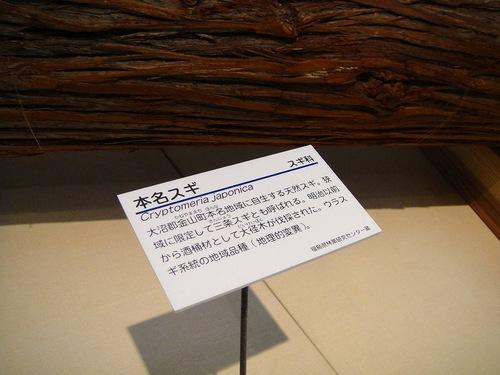 20100715dsc08848