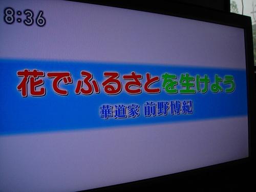 20101010dsc03772