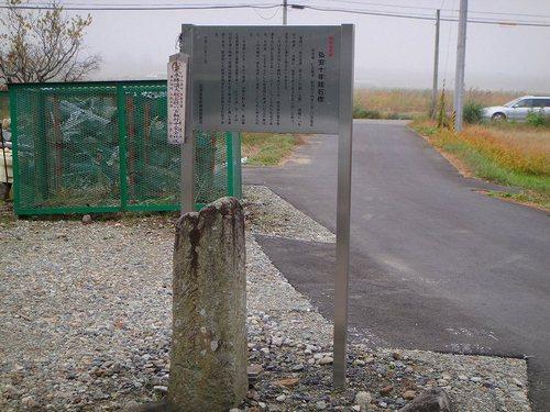 20101107dsc05806