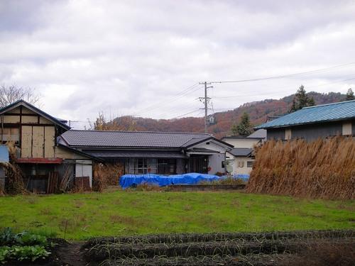20101117dsc06305