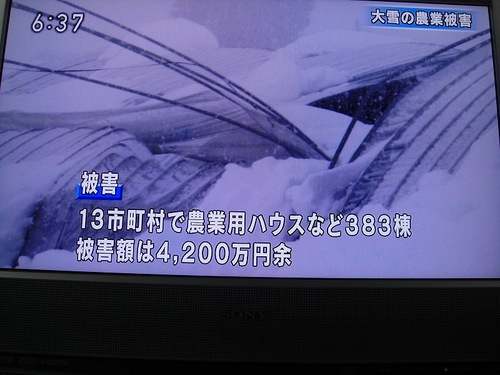 20101228dsc09381