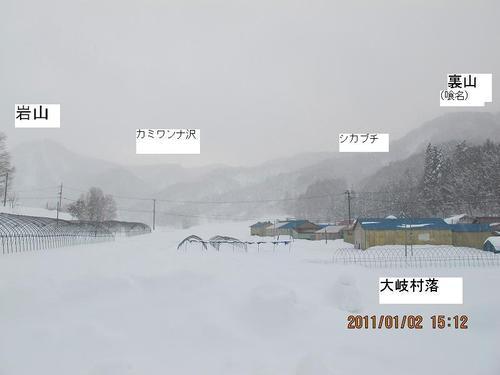 20110102img_0029_2