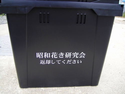 20110616dsc00482