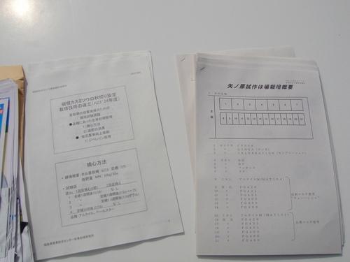 20110908dsc03575