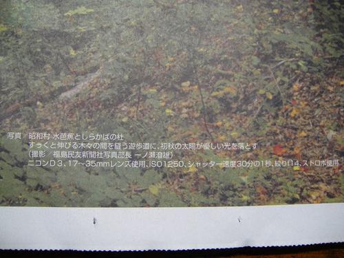 20110927dsc04243