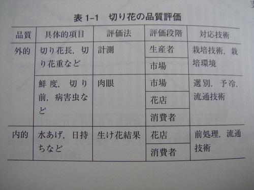 20110212dsc02437