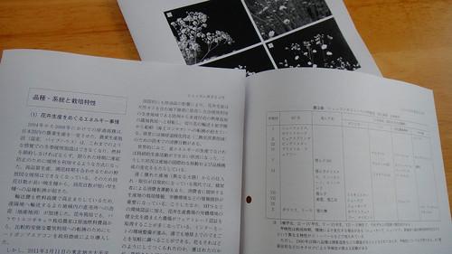 20120210dsc04126