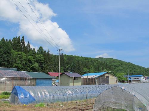 20120615oimg_0650