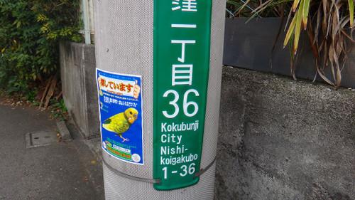20141031dsc02461