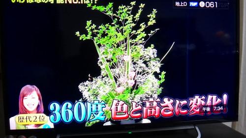 20150409dsc02657